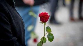 Rose Gedenken Dachau
